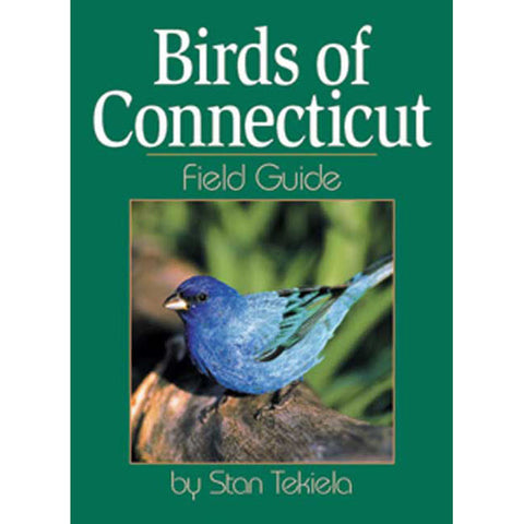 Connecticut Birds Field Guide