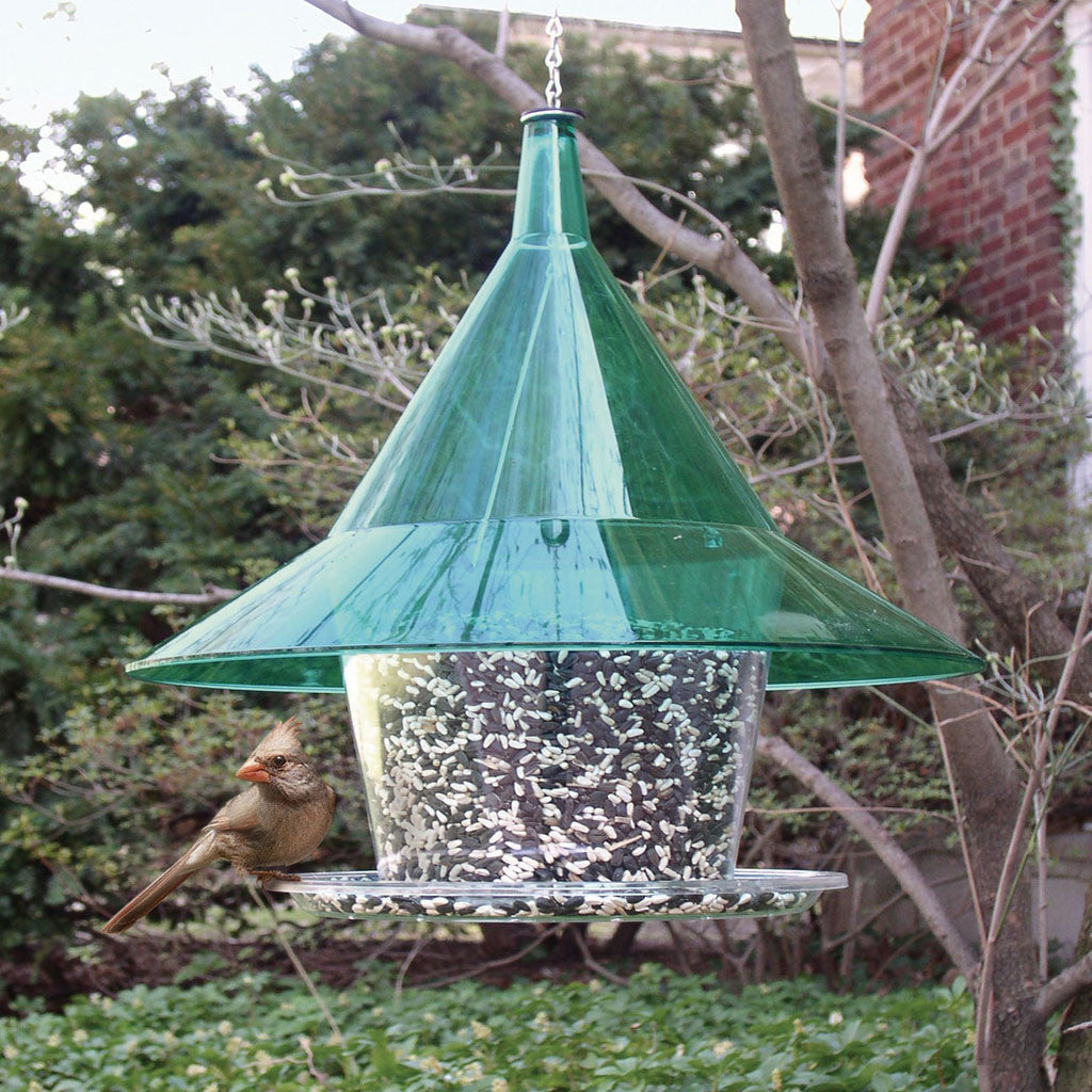 Arundale Mandarin Sky Cafe 17 IN Green Clear Squirrel Proof Dome 1.5 Gal Circular Tray Bird Feeder