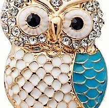 Owl With Stones Bottle Stopper