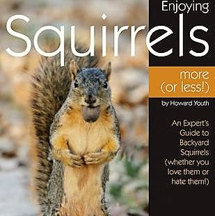 Enjoying Squirrels More (Or Less) Book