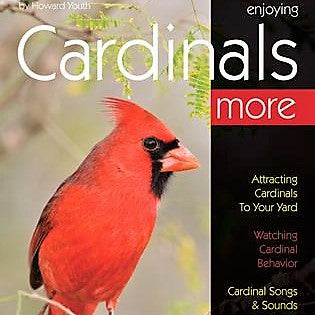 Enjoying Cardinals More Book