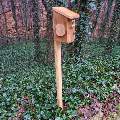 Handmade Bluebird Nest Box