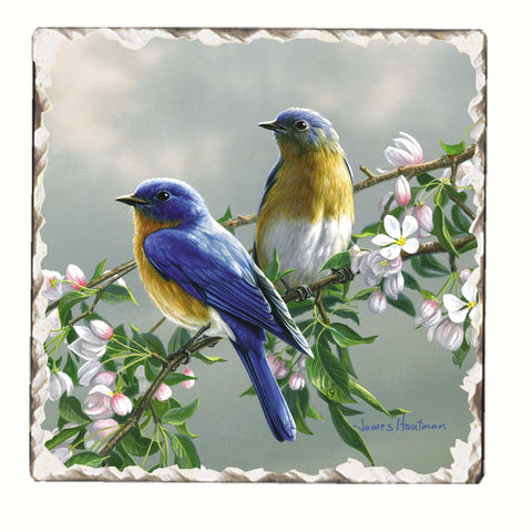 Bluebirds and Blossoms Single Tumbled Tile Coaster
