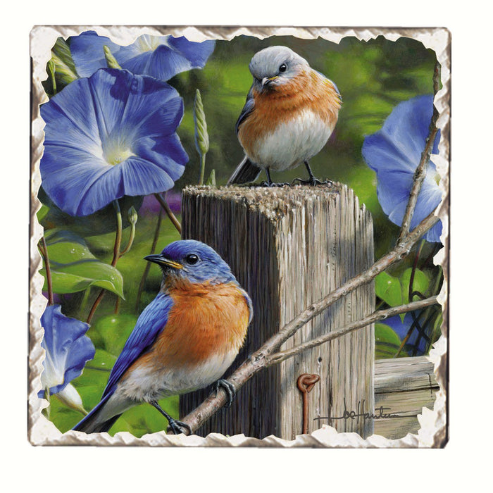 Bluebirds on Fence Post Single Tumbled Tile Coaster