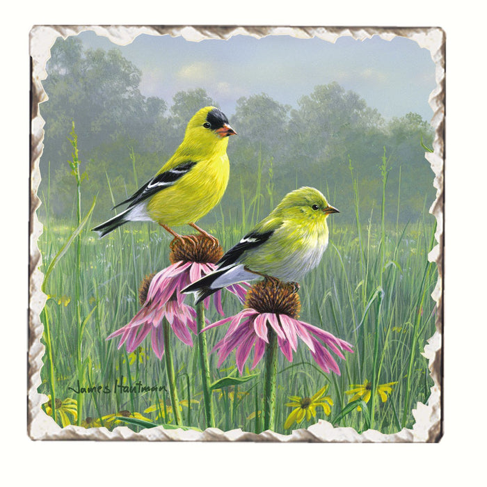 Goldfinches and Coneflowers Single Tumbled Tile Coaster