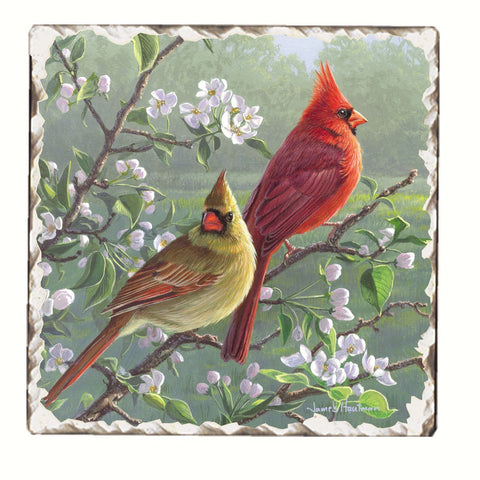 Beautiful Songbirds Cardinals Trivet
