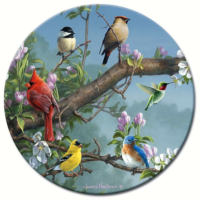 13 IN Beautiful Songbirds Lazy Susan