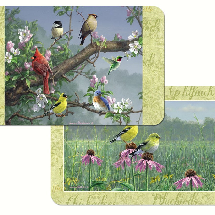 Beautiful Songbirds Plastic Reversible Placemat
