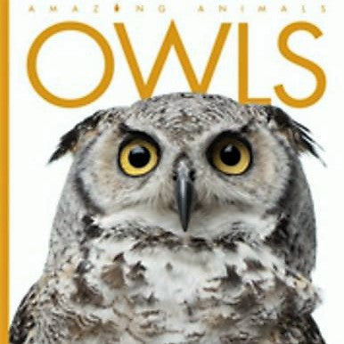 Amazing Animals Owls Book