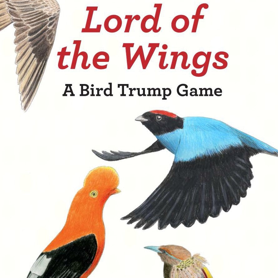 Lord of the Wings Bird Trivia