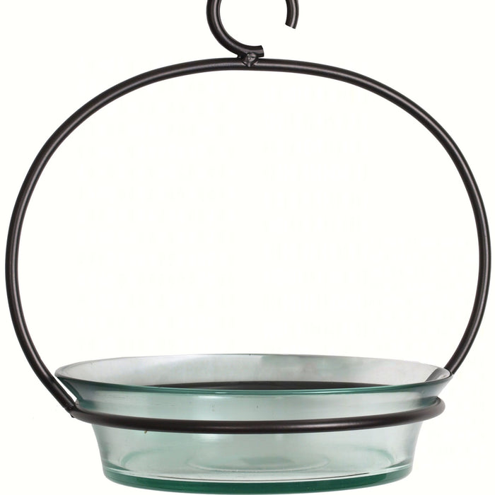 Clear Cuban Bowl Birdbath
