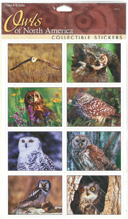 Owls NorthAmerica Sticker Sheet