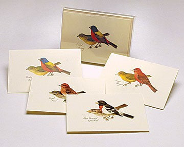 Peterson Bird Notecard Assortment II -4 styles 2 each