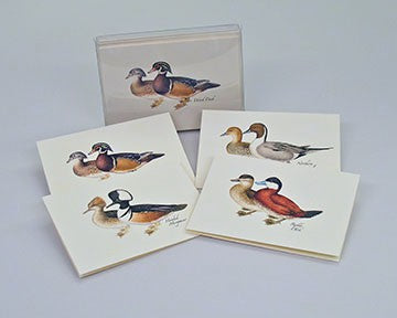Duck Notecard Assortment -4 styles 2 each