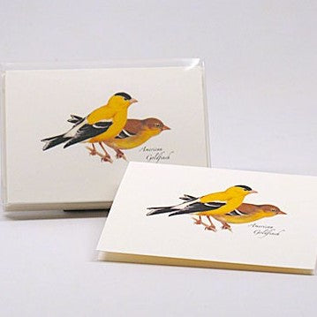 American Goldfinch Notecards Pack Of 8