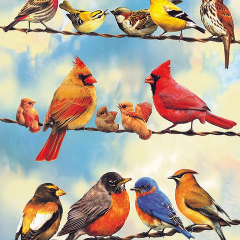 35 Piece Blue Sky Birds Tray Puzzle