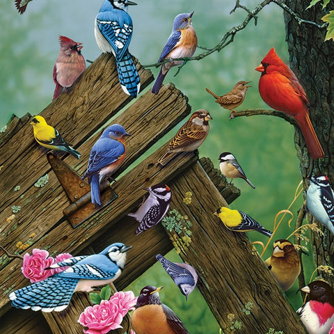 35 Piece Wildbird Gathering Tray Puzzle