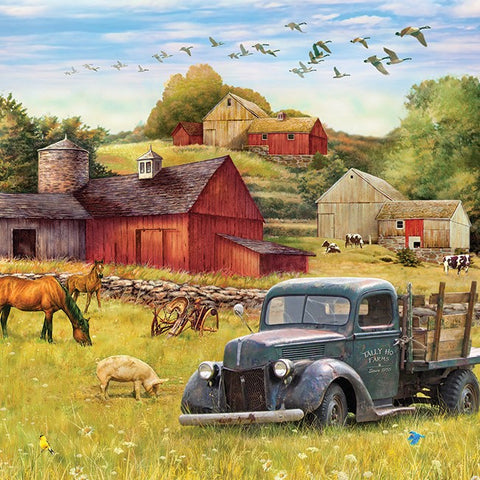 1000 Piece Summer Afternoon On The Farm Puzzle