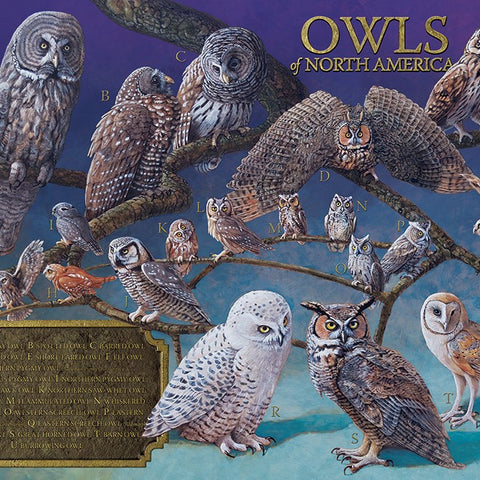 1000 Piece Owls of North America Puzzle