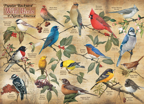 1000 Piece Popular Backyard Birds of North America Puzzle