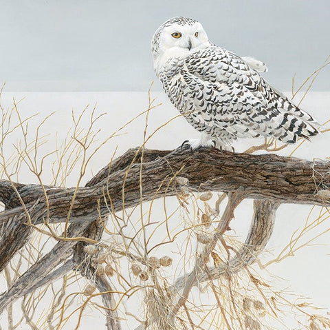 500 Piece Fallen Willow Snowy Owl Puzzle