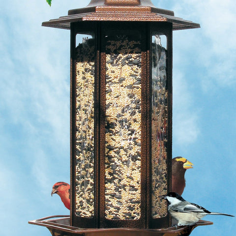 Perky Pet 6 LB Rustic Brown Tall Tulip Garden Lantern Bird Feeder