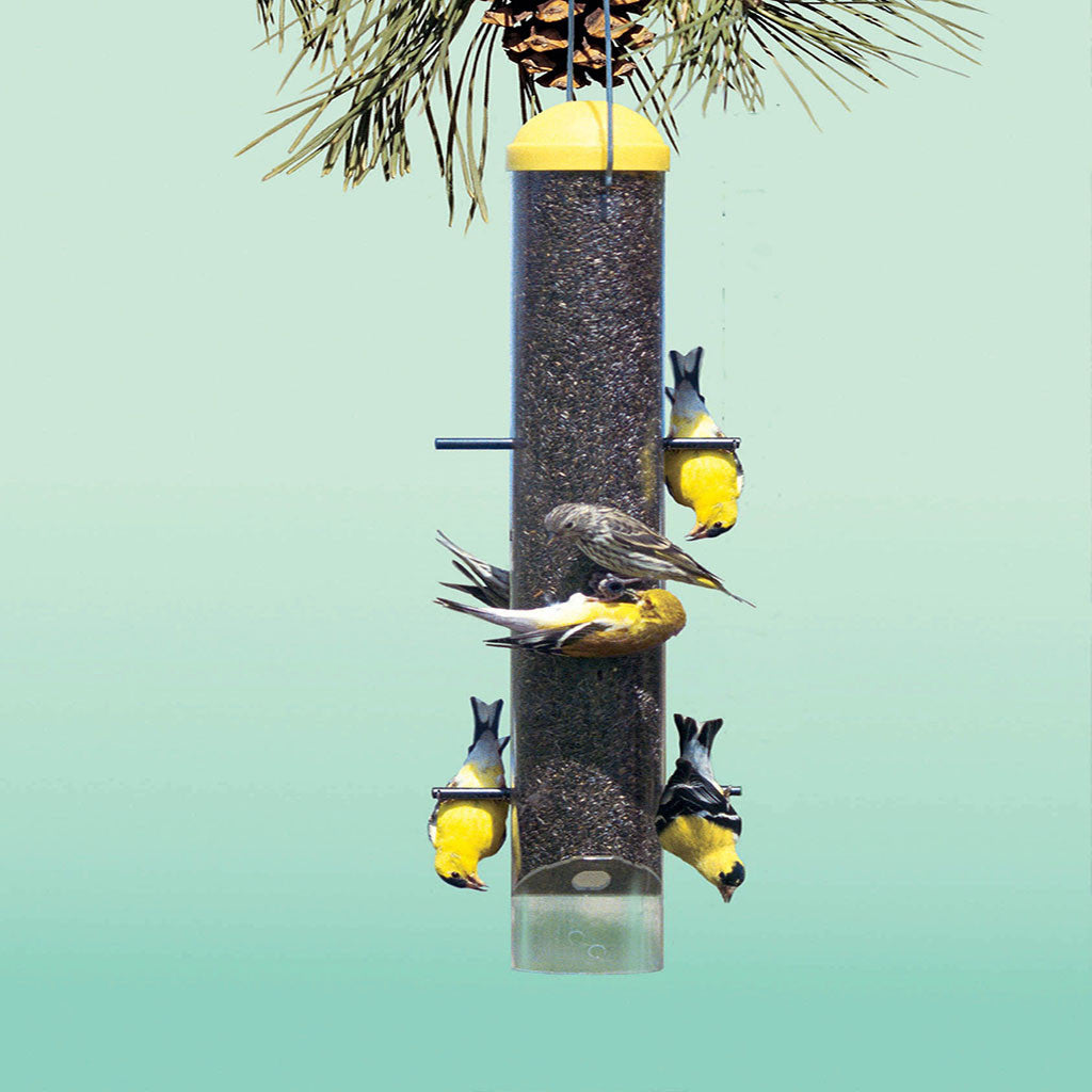 Perky Pet Upside Down Anti-House Finch Feeder