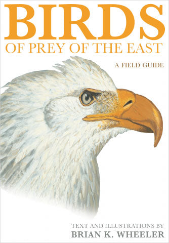Birds of Prey of the East: A Field Guide