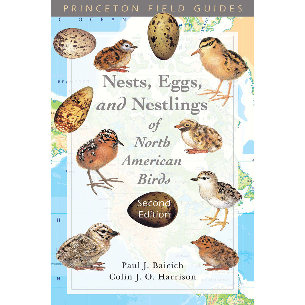 Nests, Eggs, And Nestlings Of North American Birds Birds