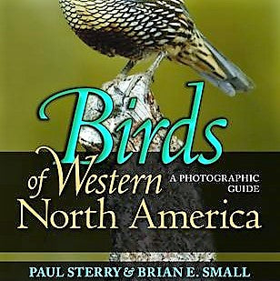 Birds of Western North America Guide