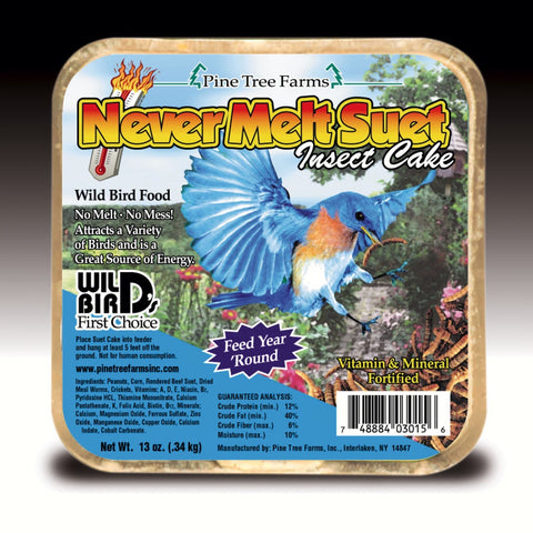 12 OZ Never Melt Insect Suet Cake