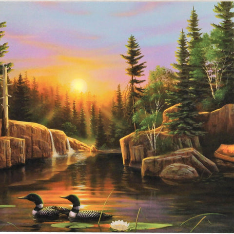 24 IN x 16 IN Evening Loons LED Wall Art