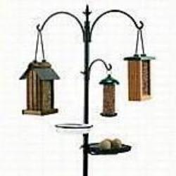 Rainbow Gardman Wild Bird Feeding Station Kit