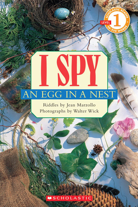 I Spy an Egg in a Nest Children's Book