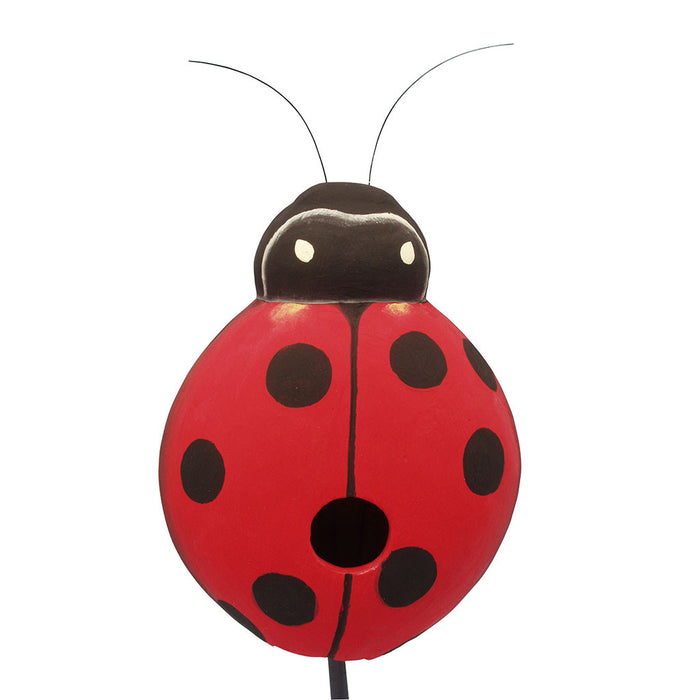 Songbird Essentials 8.9 IN x 4.7 IN x 4.7 IN Red Hand Painted Ladybug Wood Birdhouse