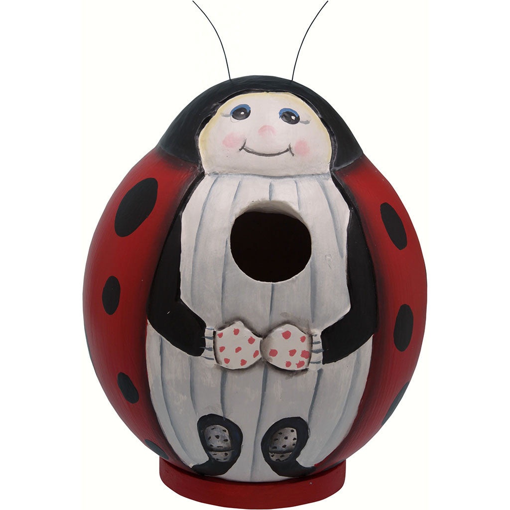 Songbird Essentials 5.9 IN x 5.9 IN x 5.9 IN Hand Painted Red/White Ladybug Gord Wood Birdhouse