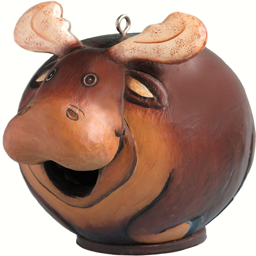 Songbird Essentials 5.5 IN x 7.1 IN x 7.1 IN Hand Painted Brown Moose Gord Wood Birdhouse