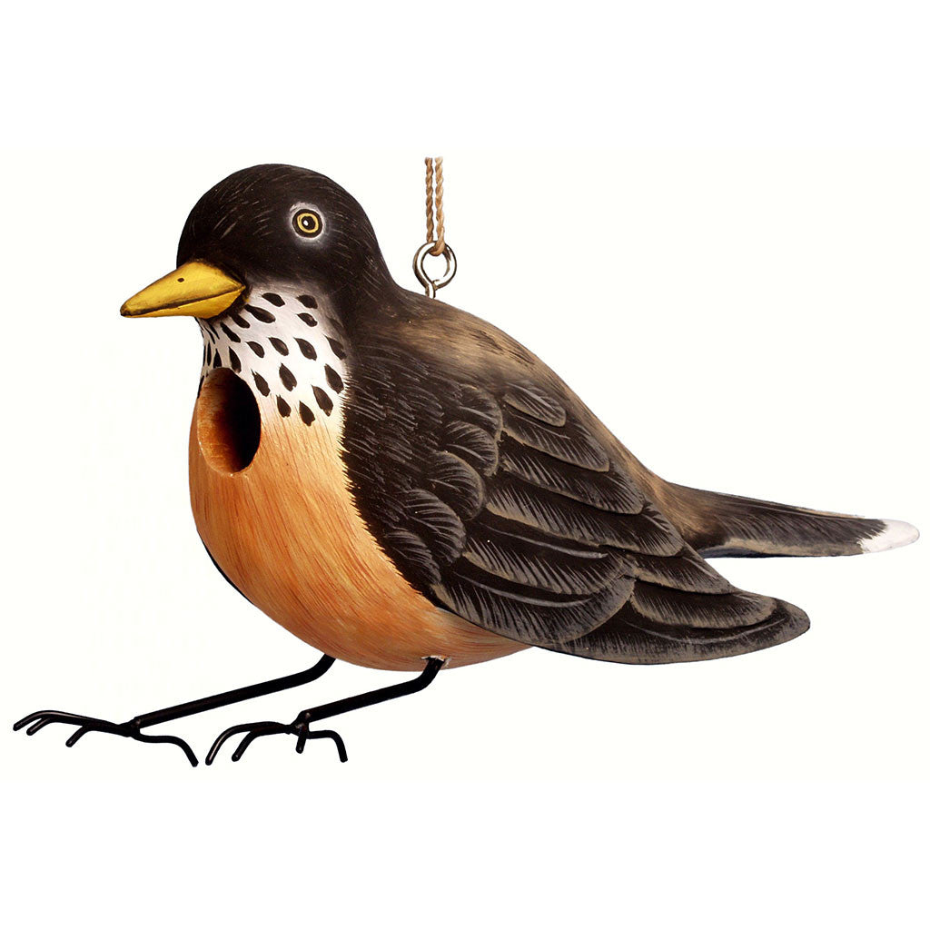 Songbird Essentials 4 IN x 12.6 IN x 12.6 IN Hand Painted Robin Wood Birdhouse