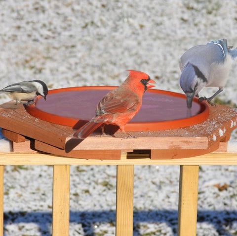 Cedar Heated Deck Bird Bath