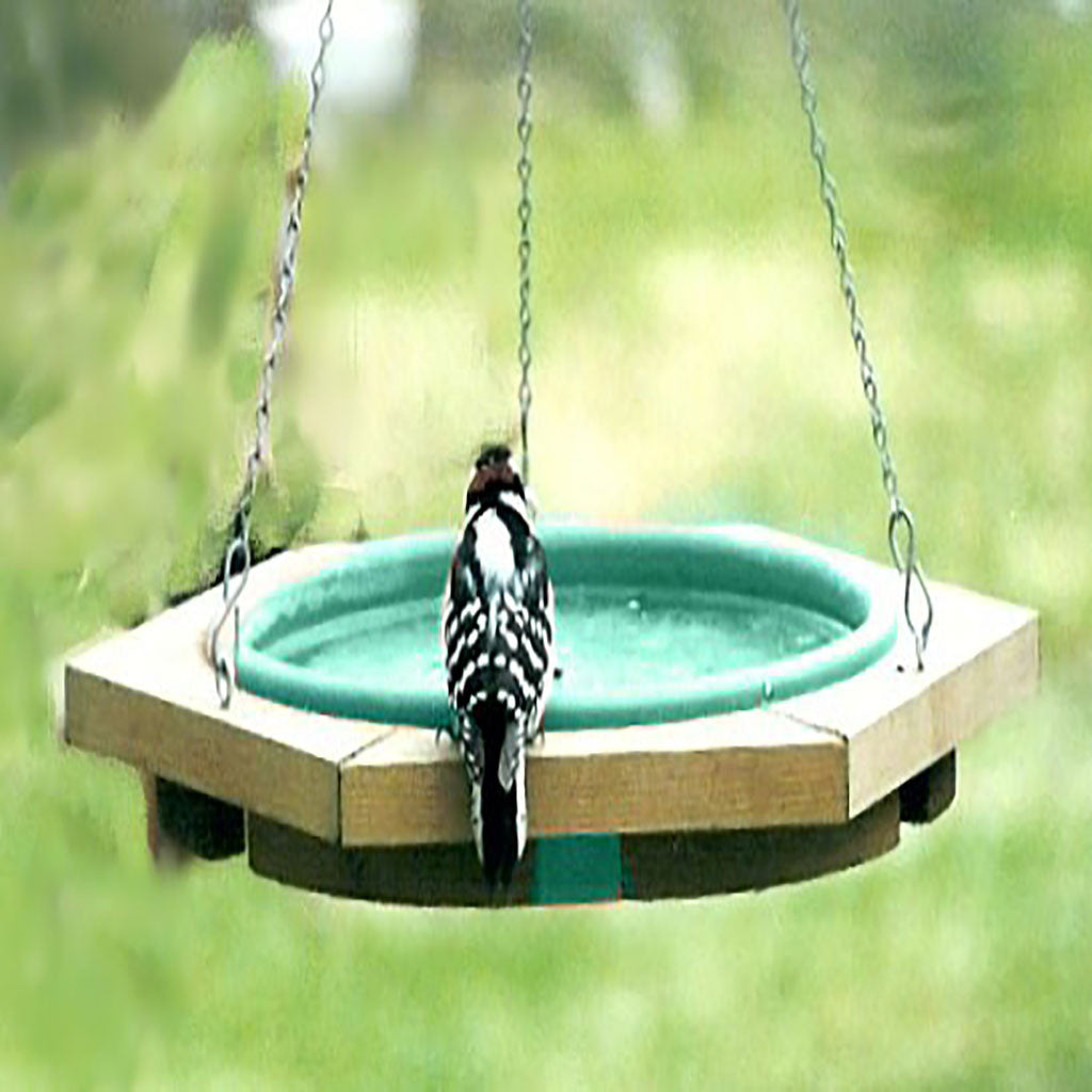 Songbird Essentials 19.75 IN Green Pan Cedar Frame Hanging Birdbath