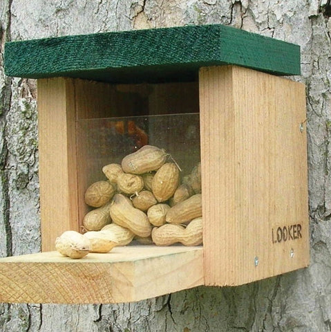 Squirrel Feeder Snack Box