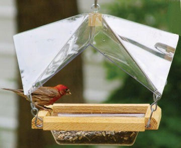 Crystal Clear Covered Bird Feeder