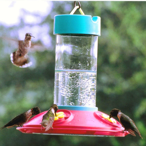 Dr. JB's Original 16 OZ Clean Hummingbird Feeder