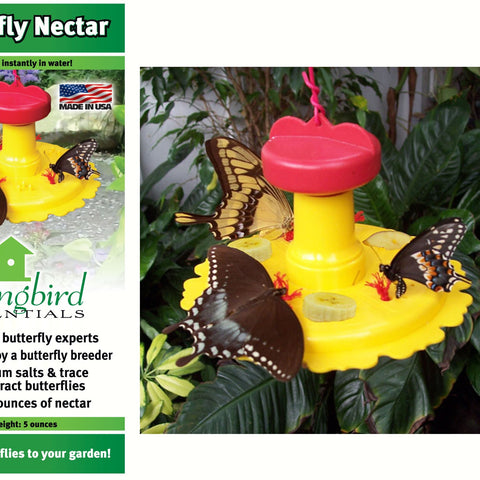 Butterfly Feeder / Nectar Combo
