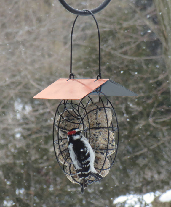 Copper Roof Suet & Seed Ball Feeder