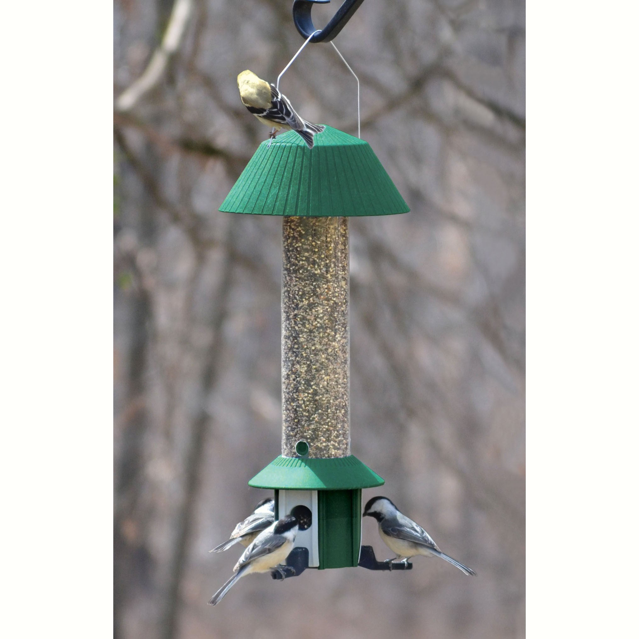 Songbird Essentials Squirrel Defeater 1.3 Qt Cap. 3 Invidually Weight Controlled Ports Nyjer Feeder