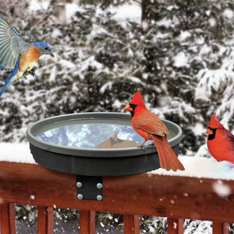 Songbird Spa Heated Bird Bath