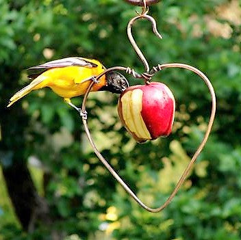 Songbird Essentials Heart Shaped Fruit Feeder