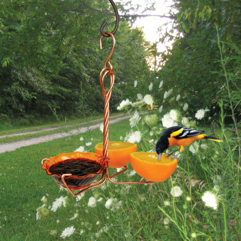 Single Cup Copper Oriole Fruit and Jelly Feeder