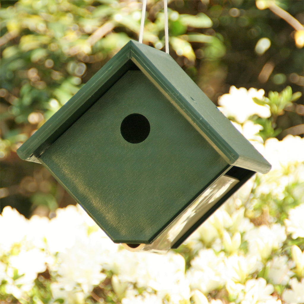 Recycled Plastic Hunter Green Wren House